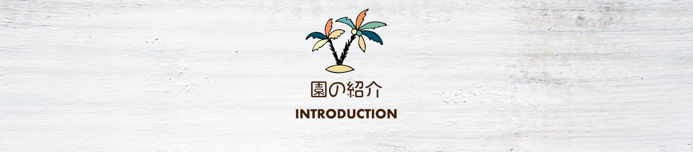 園の紹介|大阪・上本町の企業主導型保育園レオラ